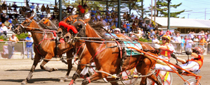 Windsor Fair racing copy